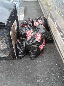 Six bags of trash were collected.
