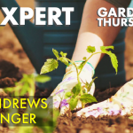 May 28, 2020: Ask an Expert, Free Webinar
