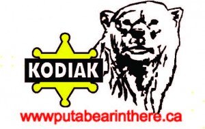 Thanks to Kodiak Security for publicizing the Fireworks event on their digital sign.